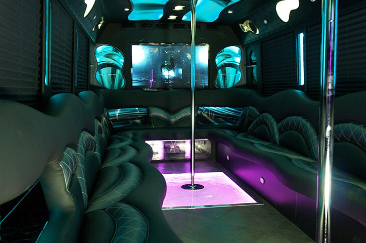 Nice Party Bus For Sale